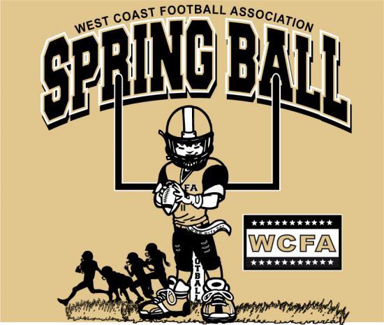 Springball Player